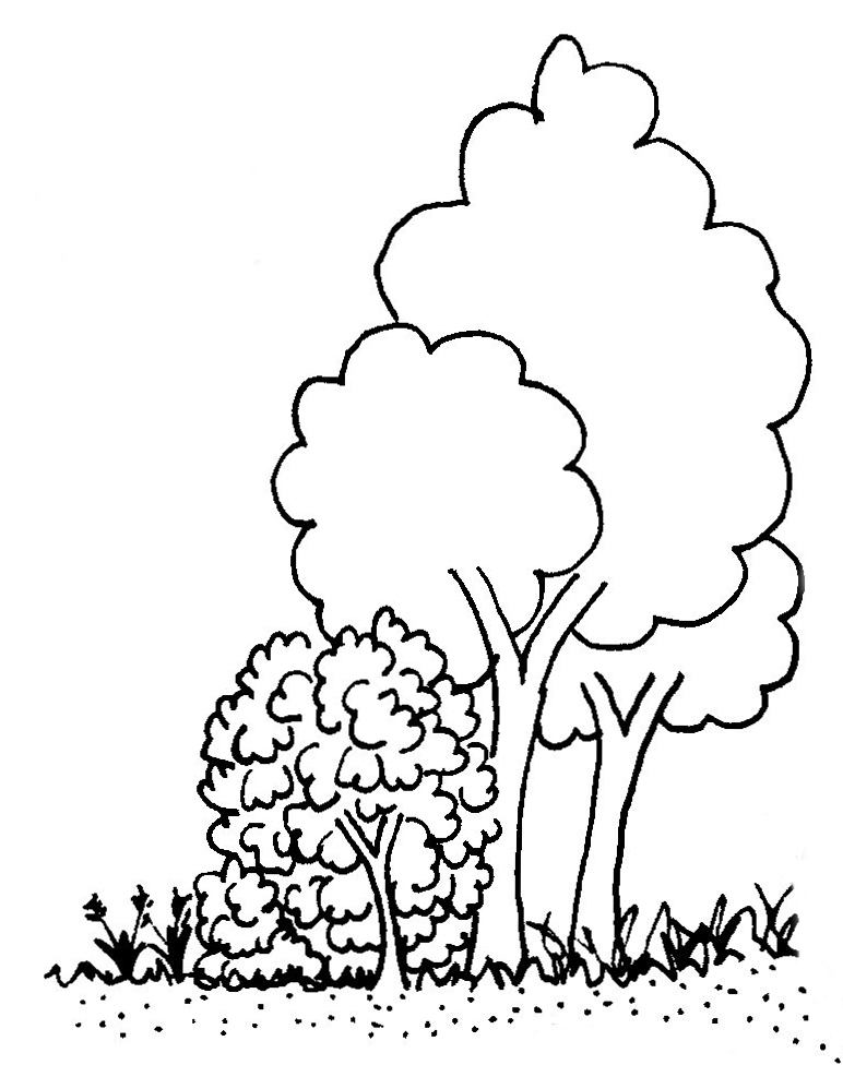 trees for header Ch7