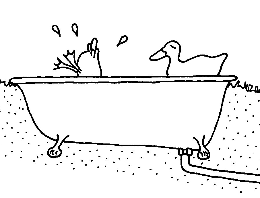 Ducks bathtub-ch14 header